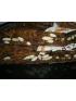 Pain de Figues   pan de higos