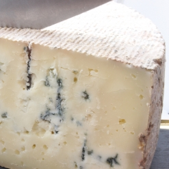 Le Bleu des Basques
